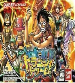 One Piece Dragon Dream
